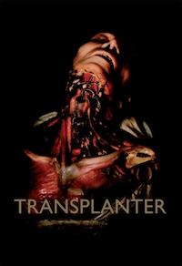 Transplanter : une approche transdisciplinaire