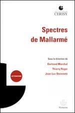 Spectres de Mallarmé